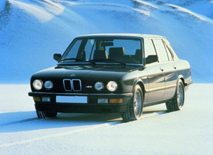 Powerflexbussningar BMW Serie 5 E28 (1982-1988)